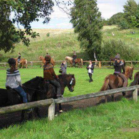 2011_BåstrupMosegaard-kvadrille